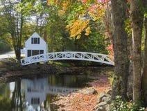 Μαίην που περπατά την αντανάκλαση γεφυρών το φθινόπωρο στοκ εικόνα με δικαίωμα ελεύθερης χρήσης