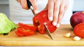 Μαγείρεμα, έννοια τροφίμων και σπιτιών φιλμ μικρού μήκους