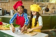 Μαγείρεμα αγοριών και κοριτσιών, κουζίνα Στοκ Φωτογραφίες