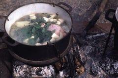 Μαγείρεμα σούπας κοτόπουλου στοκ εικόνα με δικαίωμα ελεύθερης χρήσης
