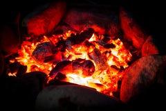 Μαγείρεμα στα μεσάνυχτα Στοκ Εικόνες