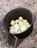 Μαγείρεμα στη φύση του πασσάλου Στοκ Εικόνες