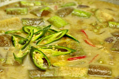 Μαγείρεμα του πράσινου κάρρυ κοτόπουλου στο γάλα καρύδων με τη μακριά μελιτζάνα Στοκ Εικόνες