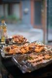 Μαγείρεμα των τροφίμων Στοκ Εικόνες
