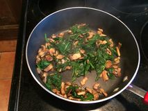 μαγείρεμα υγιές στοκ εικόνα με δικαίωμα ελεύθερης χρήσης