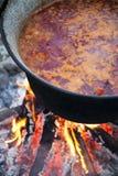 μαγείρεμα υπαίθριο Στοκ φωτογραφία με δικαίωμα ελεύθερης χρήσης