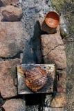 μαγείρεμα υπαίθριο Στοκ φωτογραφίες με δικαίωμα ελεύθερης χρήσης