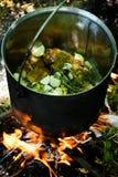 μαγείρεμα υπαίθριο Στοκ Φωτογραφία
