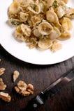 Μαγειρευμένα ζυμαρικά με τη σάλτσα ξύλων καρυδιάς Στοκ Εικόνες