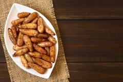 Μαγειρευμένα πικάντικα της Χιλής καρύδια πεύκων Pinon Στοκ Εικόνες