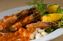 μαγειρευμένες γαρίδες Στοκ φωτογραφίες με δικαίωμα ελεύθερης χρήσης