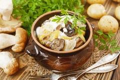 Μαγειρευμένες πατάτες με τα μανιτάρια και την ξινή κρέμα Στοκ Εικόνες