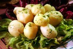μαγειρευμένη πατάτα στοκ φωτογραφίες με δικαίωμα ελεύθερης χρήσης