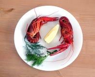 Μαγειρευμένοι αστακοί στην άσπρη κινηματογράφηση σε πρώτο πλάνο πιάτων Στοκ εικόνα με δικαίωμα ελεύθερης χρήσης