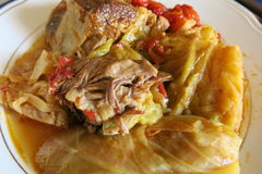 Μαγειρευμένο λαχανικό με το κρέας Στοκ Εικόνες