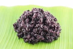 Μαγειρευμένο μαύρο κολλώδες ρύζι Στοκ Εικόνα