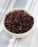 Μαγειρευμένο μαύρο ρύζι στο κύπελλο Στοκ Φωτογραφία