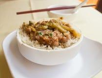 Μαγειρευμένο χοιρινό κρέας με το ρύζι Στοκ φωτογραφίες με δικαίωμα ελεύθερης χρήσης