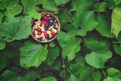 Μαγειρευμένο Oatmeal με τα φρούτα σε ένα υπόβαθρο των φύλλων Στοκ εικόνες με δικαίωμα ελεύθερης χρήσης