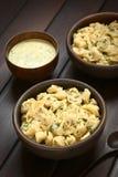 Μαγειρευμένο Tortellini με τη σάλτσα μαϊντανού και κρέμας Στοκ Εικόνες