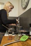 Μαγειρεύοντας γεύμα νοικοκυρών στοκ εικόνες