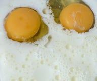Μαγειρεύοντας ζύμη για τις τηγανίτες: να χτυπήσει ελαφρά το γάλα με τα αυγά Στοκ εικόνα με δικαίωμα ελεύθερης χρήσης