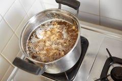 Μαγειρεύοντας κουάκερ κοτόπουλου Στοκ εικόνα με δικαίωμα ελεύθερης χρήσης