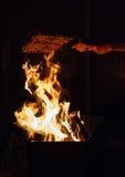 Μαγειρεύοντας κρέας στην πυρκαγιά Στοκ Εικόνα