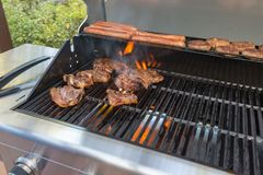 Μαγειρεύοντας κρέας στη σχάρα Στοκ φωτογραφία με δικαίωμα ελεύθερης χρήσης