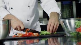 Μαγειρεύοντας λαχανικά αρχιμαγείρων στην κουζίνα Χέρια κινηματογραφήσεων σε πρώτο πλάνο που κόβουν τη οργανική τροφή απόθεμα βίντεο