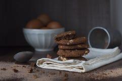 Μαγειρεύοντας μπισκότα Στοκ Εικόνες
