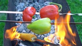 Μαγειρεύοντας πιπέρι στην πυρκαγιά απόθεμα βίντεο