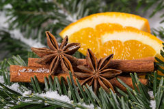 μαγειρεύοντας ραβδιά αστεριών καρυκευμάτων συστατικών κανέλας Χριστουγέννων γλυκάνισου Στοκ εικόνα με δικαίωμα ελεύθερης χρήσης