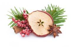 μαγειρεύοντας ραβδιά αστεριών καρυκευμάτων συστατικών κανέλας Χριστουγέννων γλυκάνισου Apple, γλυκάνισο, αστέρια, κανέλα, πεύκο α Στοκ εικόνα με δικαίωμα ελεύθερης χρήσης