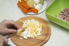 Μαγειρεύοντας σαλάτα στοκ φωτογραφίες