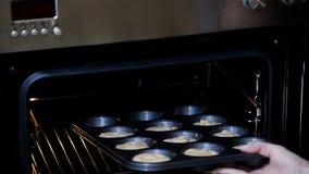 Μαγειρεύοντας στο σπίτι, που ψήνει στο φούρνο Το όμορφο κορίτσι στην κουζίνα της βάζει το κέικ της στο φούρνο φιλμ μικρού μήκους