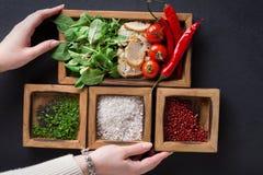 Μαγειρεύοντας συστατικά και χορτάρια εκμετάλλευσης γυναικών στο ξύλινο κιβώτιο στο σκοτεινό υπόβαθρο Στοκ φωτογραφία με δικαίωμα ελεύθερης χρήσης