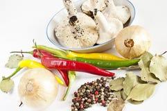 μαγειρεύοντας συστατι&k Στοκ Εικόνα