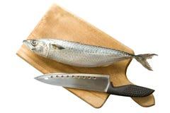 μαγειρεύοντας ψάρια Στοκ Εικόνες