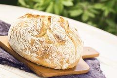 Μαγιά Boule ή φραντζόλα του ψωμιού στον τέμνοντα πίνακα στοκ εικόνα