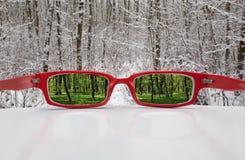 Μαγικά γυαλιά Στοκ Εικόνα