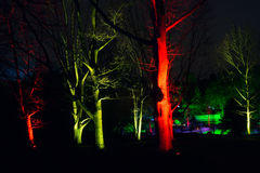 Μαγικά φω'τα στο πάρκο Gruga, Γερμανία Στοκ Εικόνα