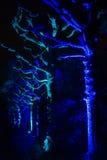 Μαγικά φω'τα στο πάρκο Gruga, Γερμανία Στοκ φωτογραφία με δικαίωμα ελεύθερης χρήσης