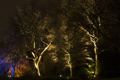 Μαγικά φω'τα στο πάρκο Gruga, Γερμανία Στοκ Φωτογραφίες