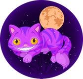 Μαγική γάτα απεικόνιση αποθεμάτων