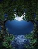 Μαγική λίμνη ελεύθερη απεικόνιση δικαιώματος