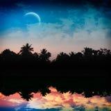 μαγική νύχτα τροπική Στοκ Εικόνες