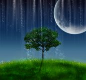 μαγική νύχτα ελεύθερη απεικόνιση δικαιώματος