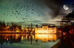 Μαγική νύχτα Στοκ φωτογραφία με δικαίωμα ελεύθερης χρήσης