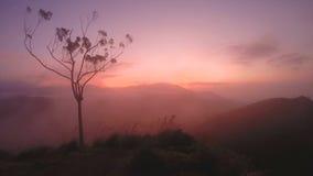Μαγικός ήλιος που αυξάνεται στην αιχμή της Ella, Σρι Λάνκα φιλμ μικρού μήκους